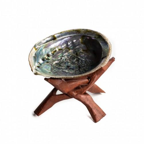 Abalone školjka 11 x 9 cm na stojalu za sežiganje belega žajblja