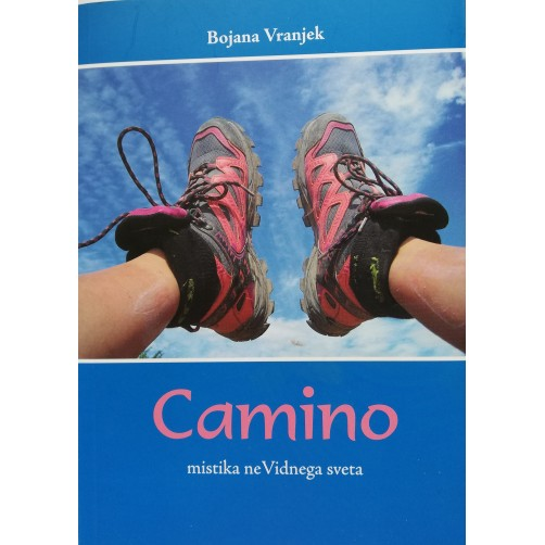 Camino mistika neVidnega sveta, knjiga